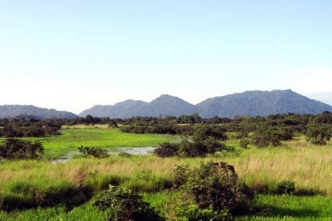 Assam ready with land to attract investors